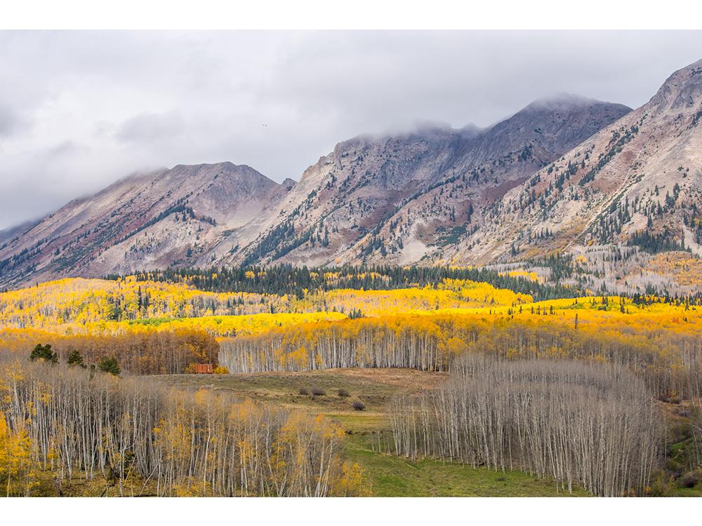 landscape_0003_IMG_9726-HDR.png