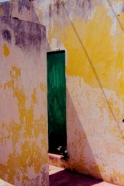 Jamaica II Green Door with Flowers