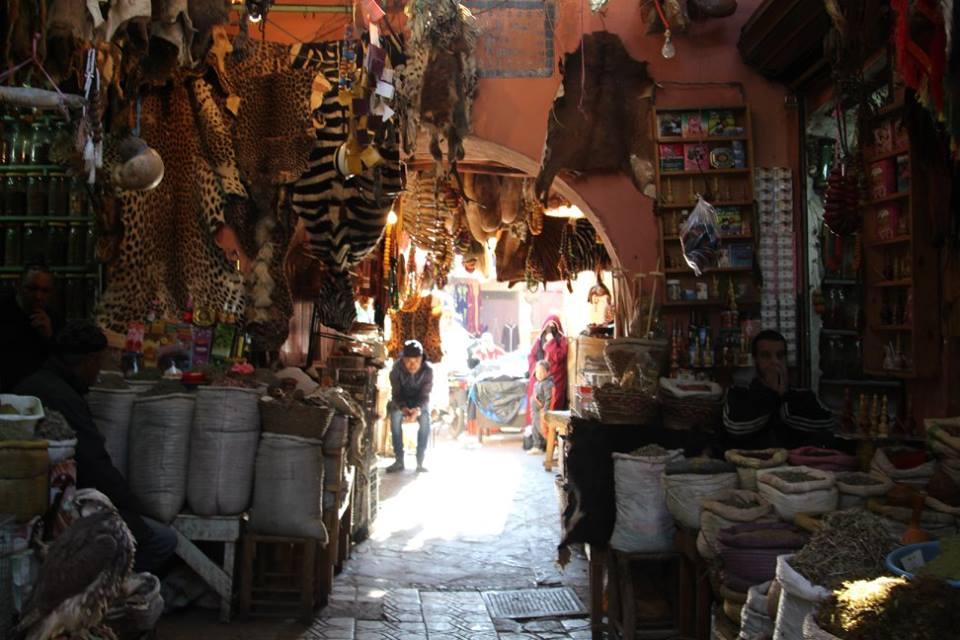 Morocco 27.jpg
