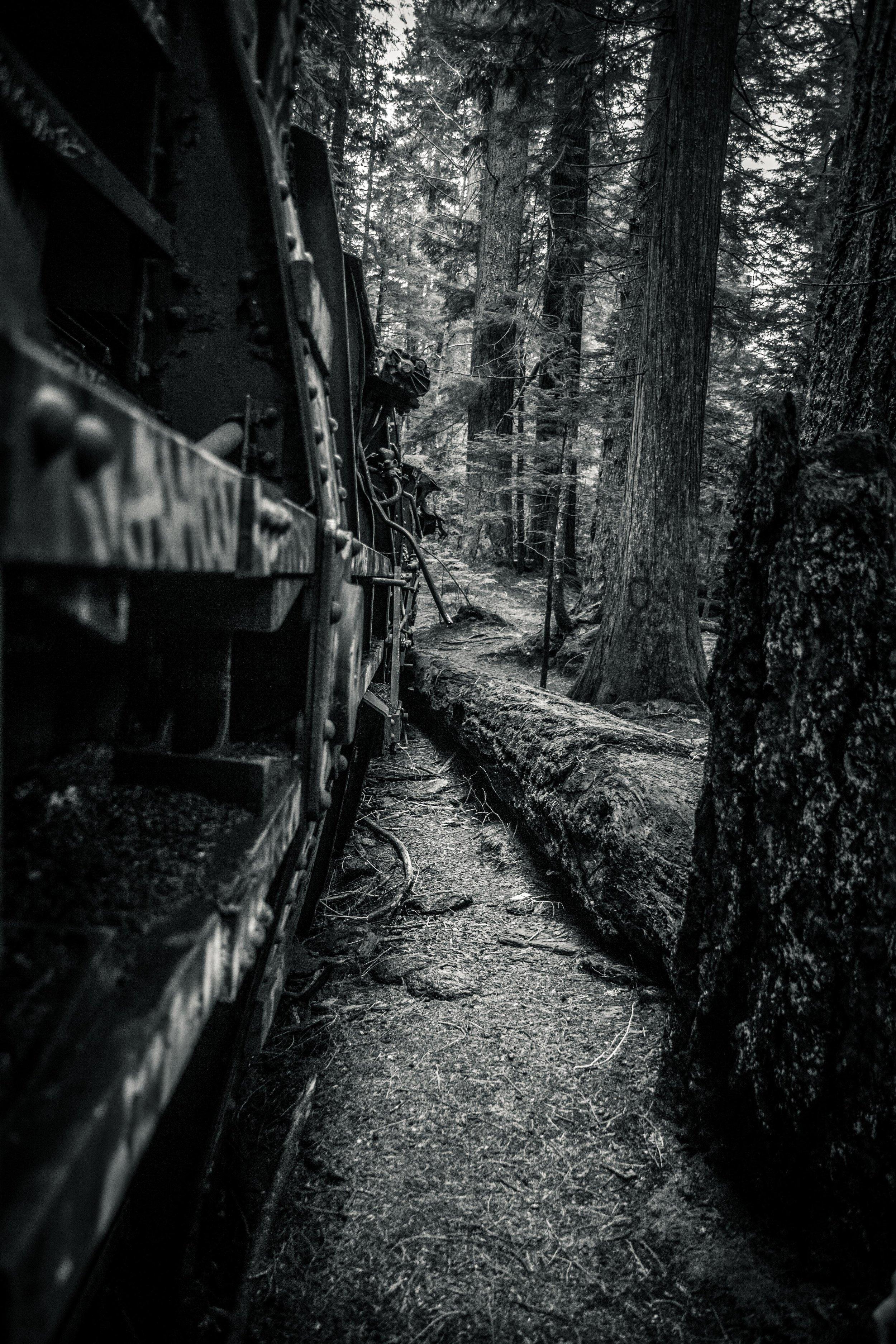 Train Wrecks - Whistler