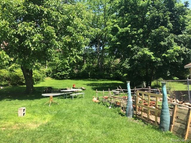 Backyard 2.jpeg