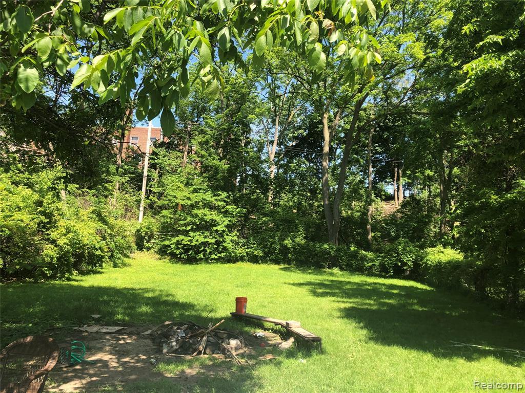 Backyard 4.jpeg