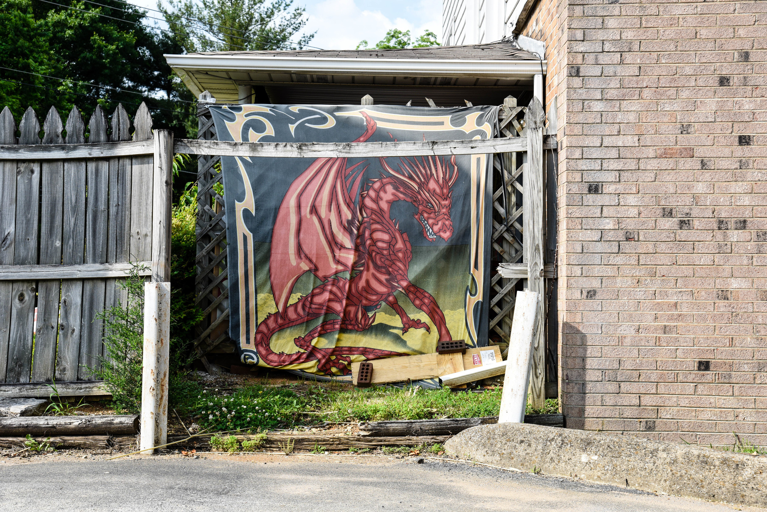 Dragon No. 2, Johnson City, TN. 2016.