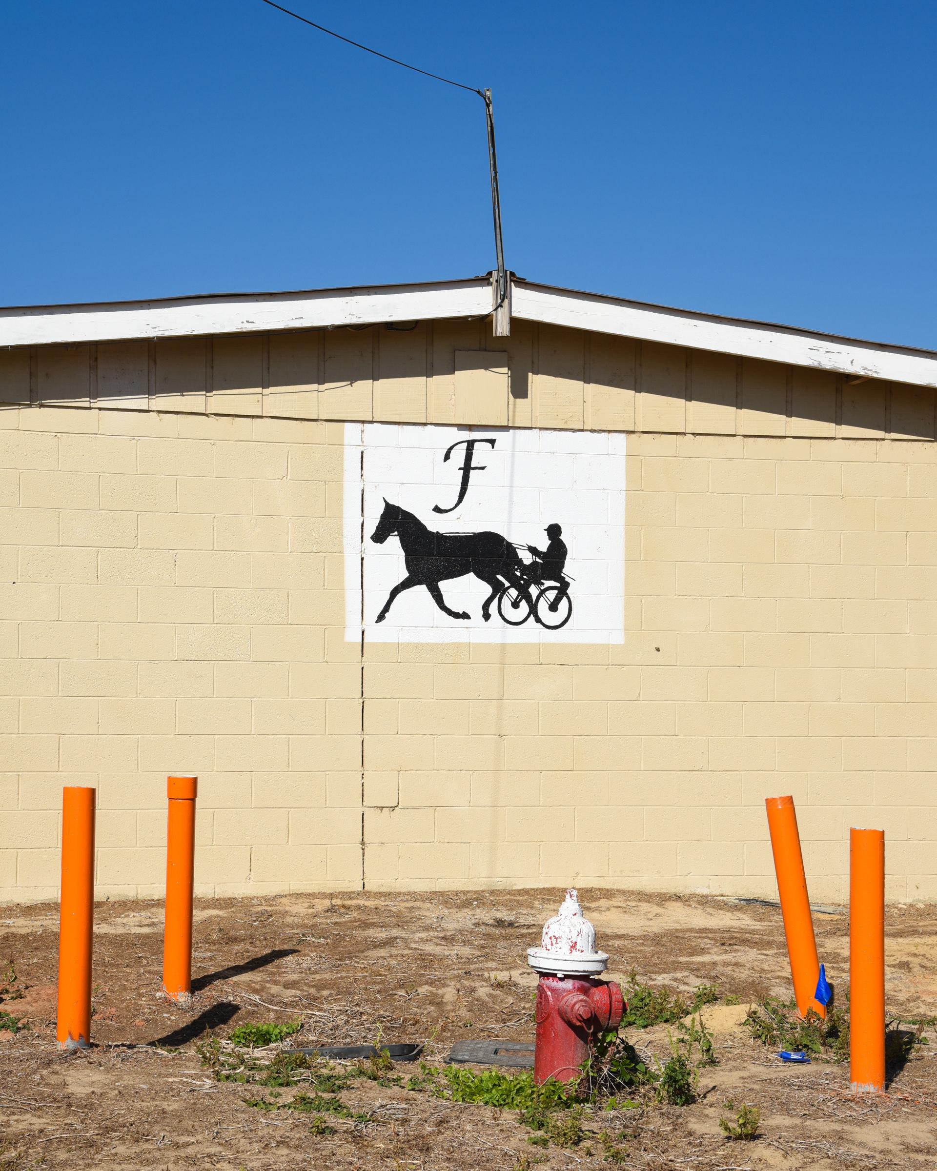 Hawkinsville, GA. 2016. Digital Image.