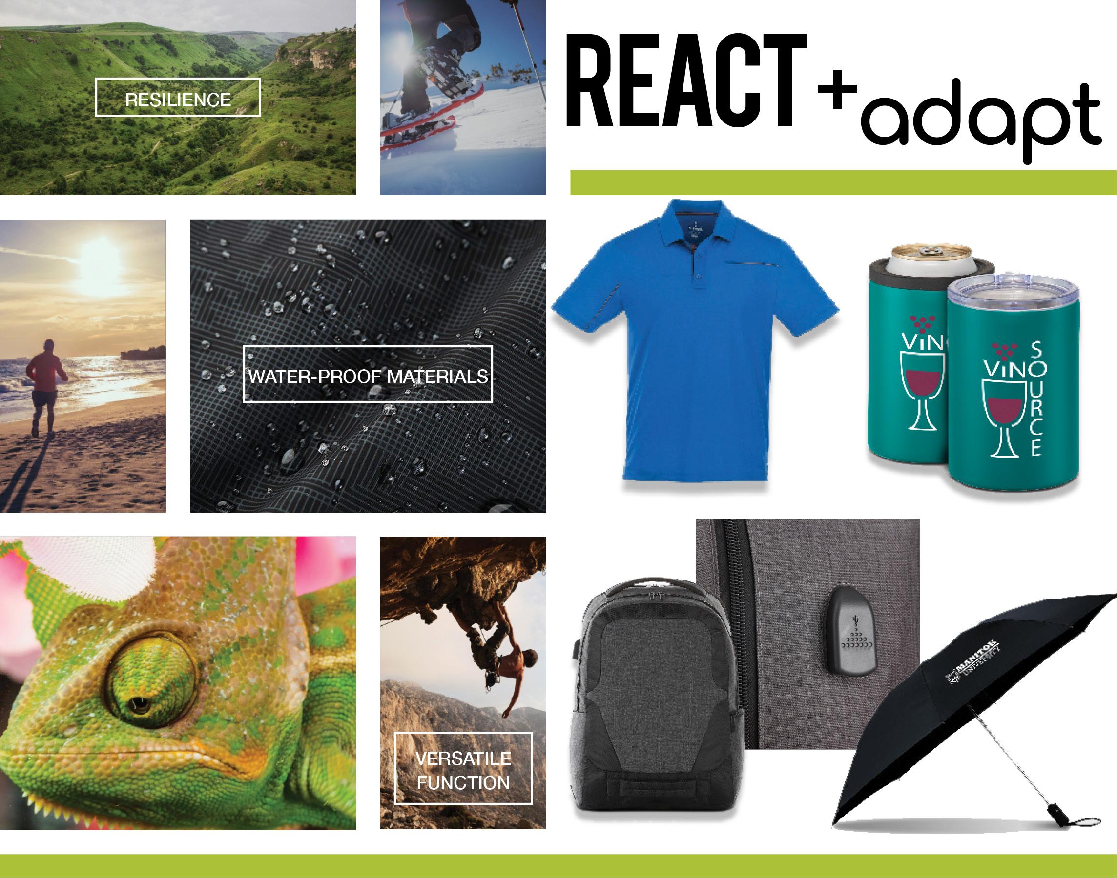 PCNA-React+Adapt.jpg