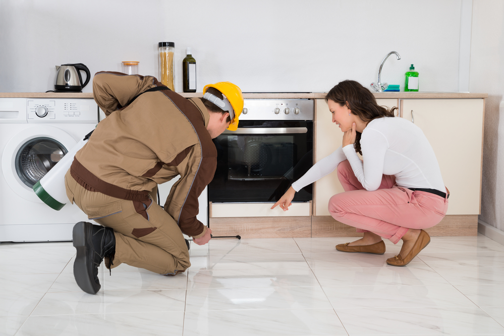Greenville Rental Management Pest Control