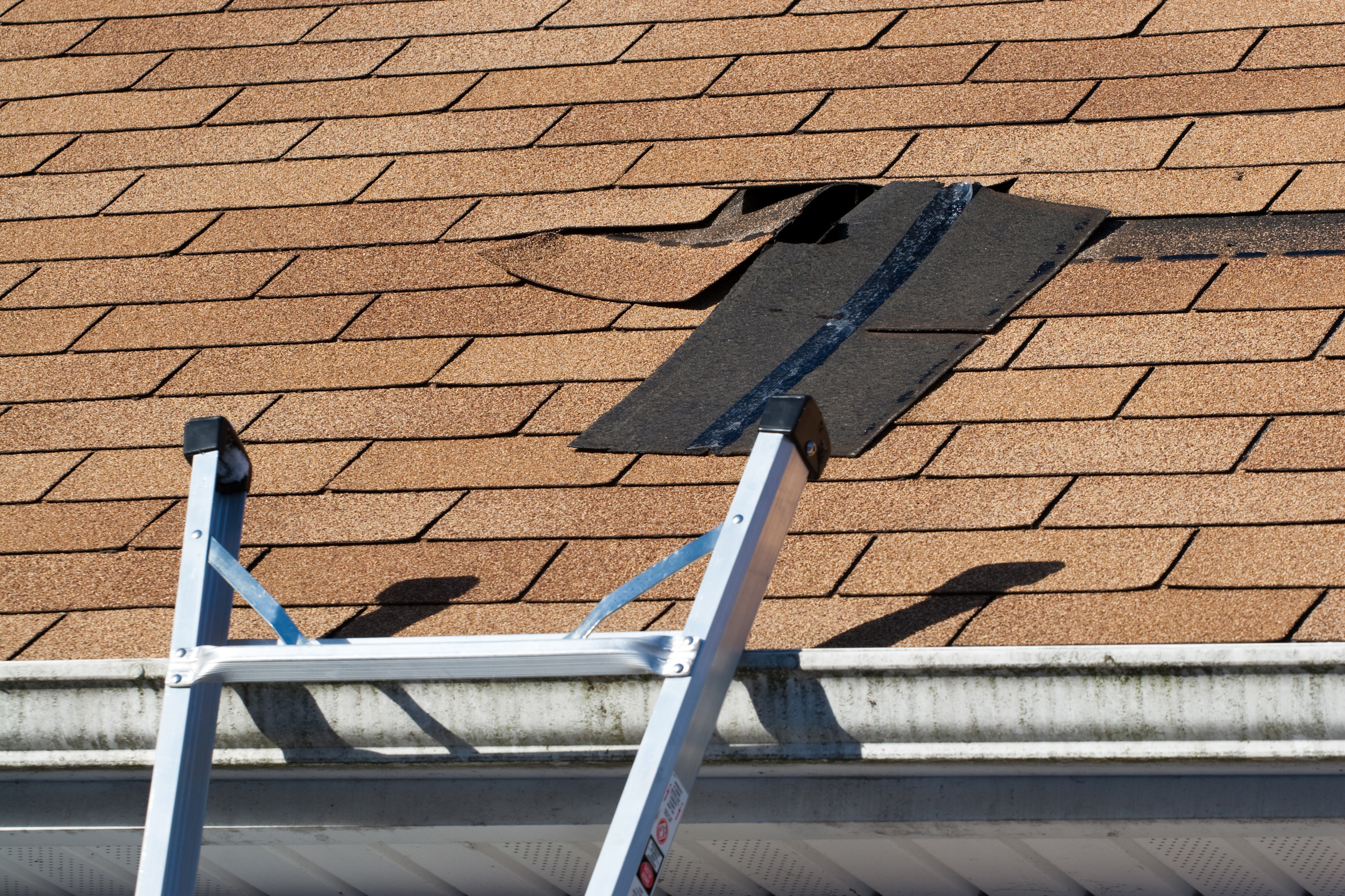 Roof Repair Property Management Easley SC