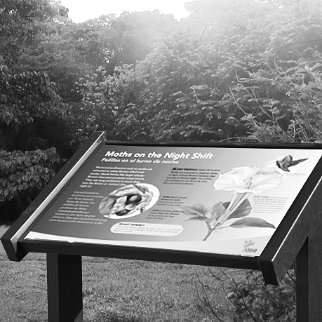 Pollinator Garden Panels