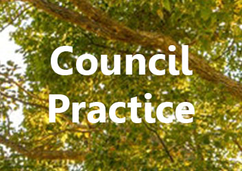 Council-Practice.jpg