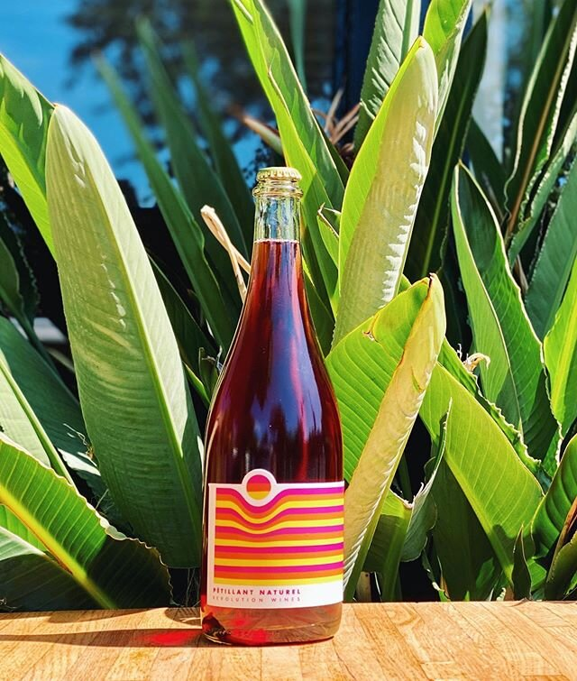 What to do when it's too hot to eat...drink. . Super limited 2019 Pétillant Naturel — a bubbly Rosé of Syrah ✨ get it while it's hot! . REV is open everyday for dine-in & curbside pick-up. . #WeAreOpen #SocialDistanceDining #OpenForTakeout #CurbsidePickUp #exploremidtown #sacramento365 #sacramentofoodies #sacfarm2fork #vegansacramento