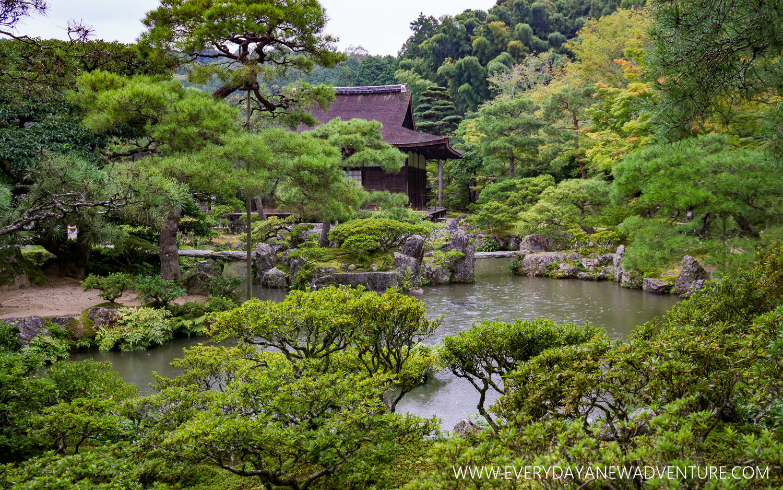 [Squarespace1500-014] Kyoto-07760.jpg