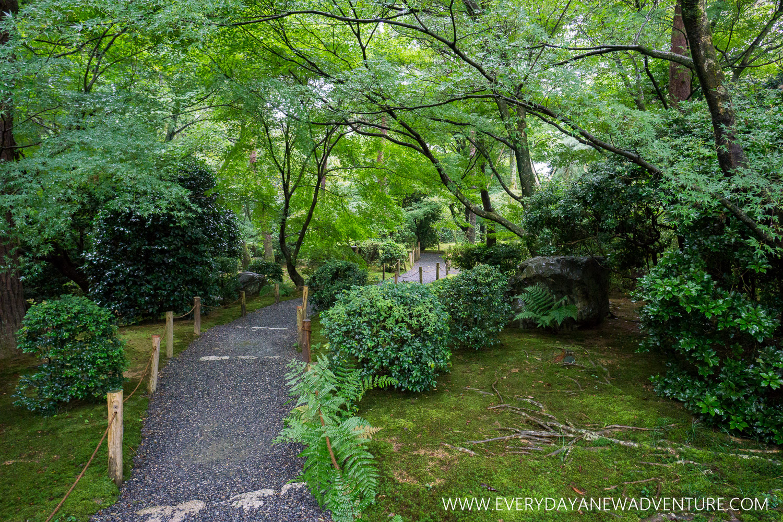 [Squarespace1500-032] Kyoto-08196.jpg