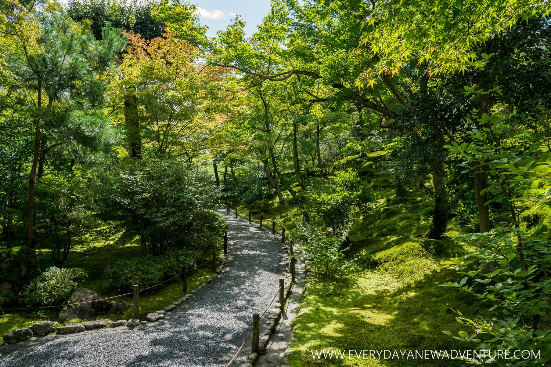 [Squarespace1500-046] Kyoto-08504.jpg