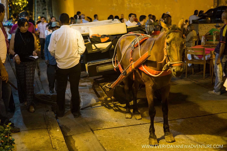 [SqSp1500-023] Cartagena-00420.jpg