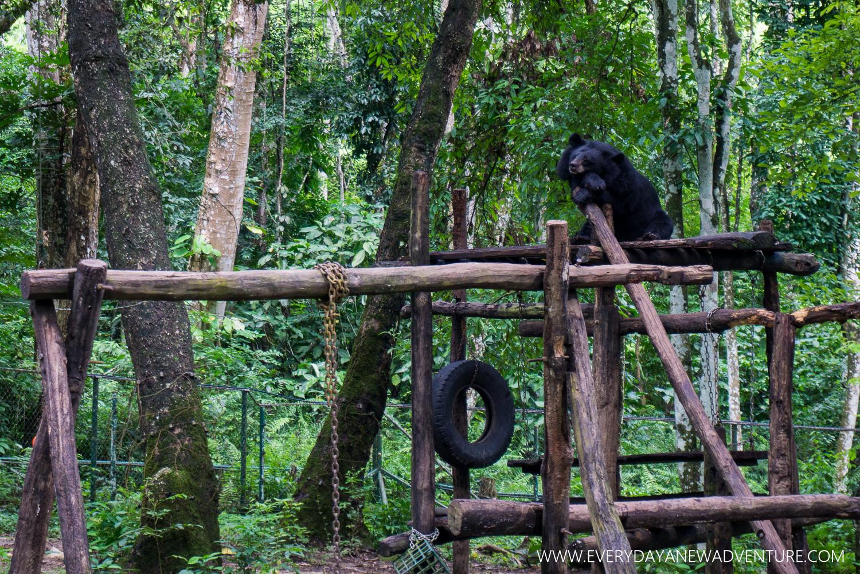 [SqSp1500-012] Luang Prabang-02562.jpg