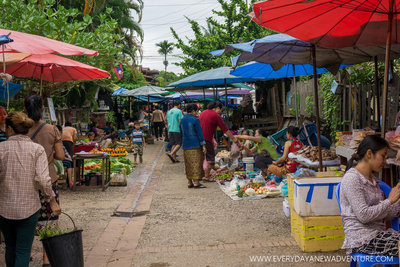 [SqSp1500-047] Luang Prabang-02991.jpg