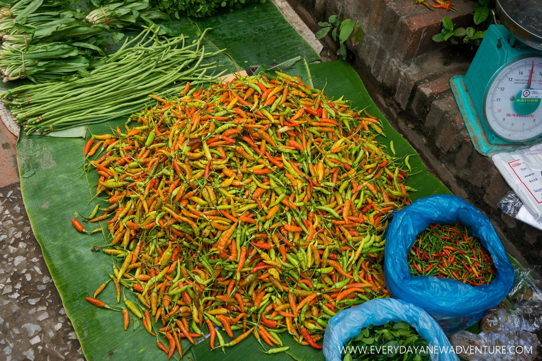 [SqSp1500-048] Luang Prabang-02994.jpg