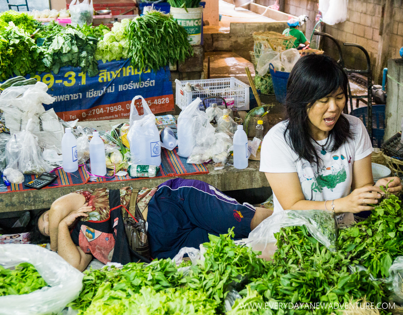 [SqSp1500-047] Chiang Mai-00736.jpg