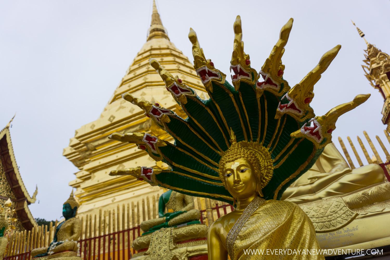 [SqSp1500-059] Chiang Mai-02468.jpg