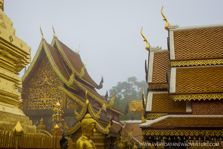[SqSp1500-060] Chiang Mai-01005.jpg