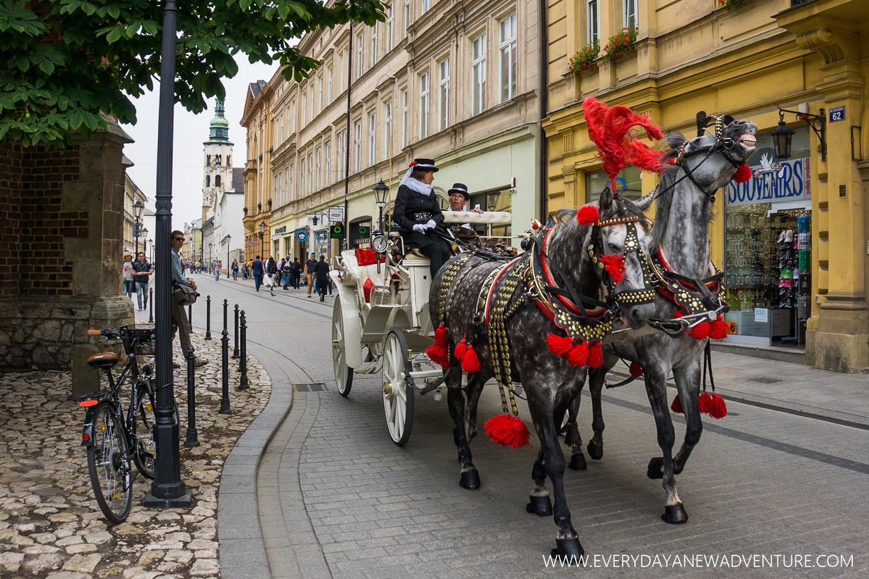 [SqSp1500-001] Krakow-01482.jpg