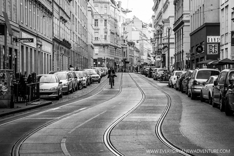 [SqSp1500-059] Vienna-01004.jpg