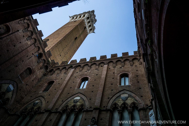[SqSp1500-006] Siena-241.jpg