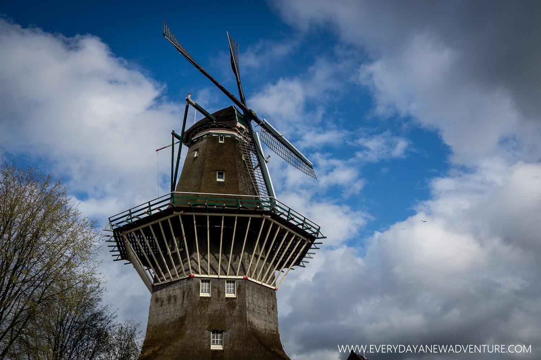 [SqSp1500-047] Amsterdam-584.jpg