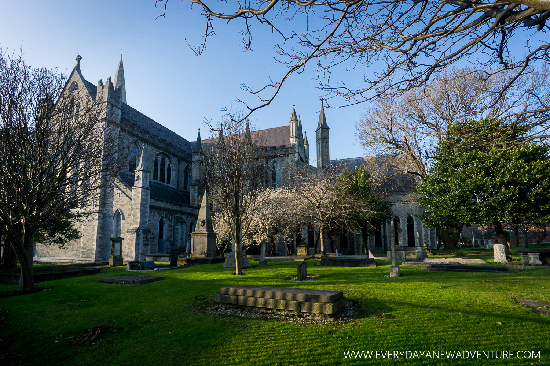 [SqSp1500-060] Dublin (1st Visit)-930.jpg