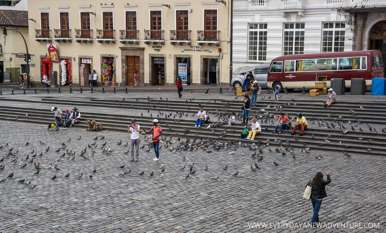[SqSp1500-008] Quito-02145.jpg