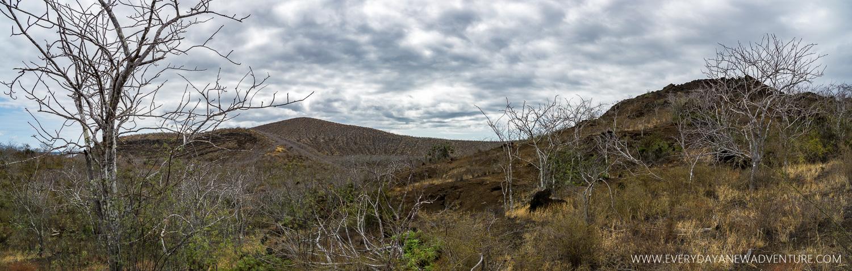 [SqSpGallery-022] Galapagos-659-Pano.jpg