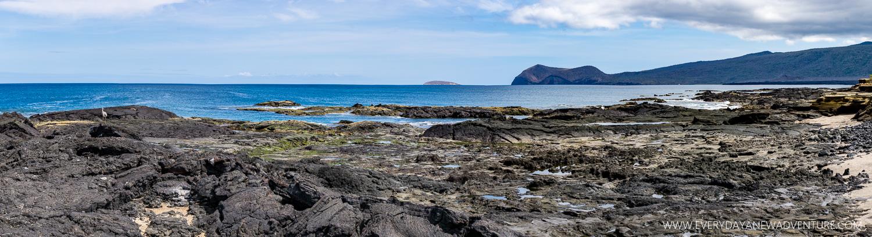 [SqSpGallery-043] Galapagos-1370-Pano.jpg