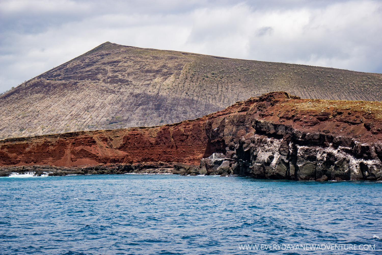 [SqSpGallery-047] Galapagos-1421.jpg