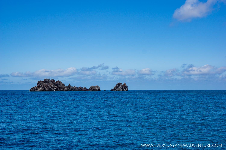 [SqSpGallery-072] Galapagos-2005.jpg