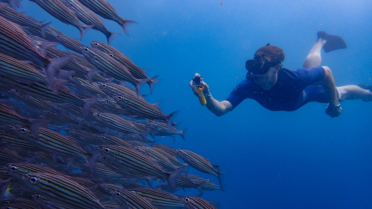 Jake checking out a school of fish. (Photo courtesy of Victor)