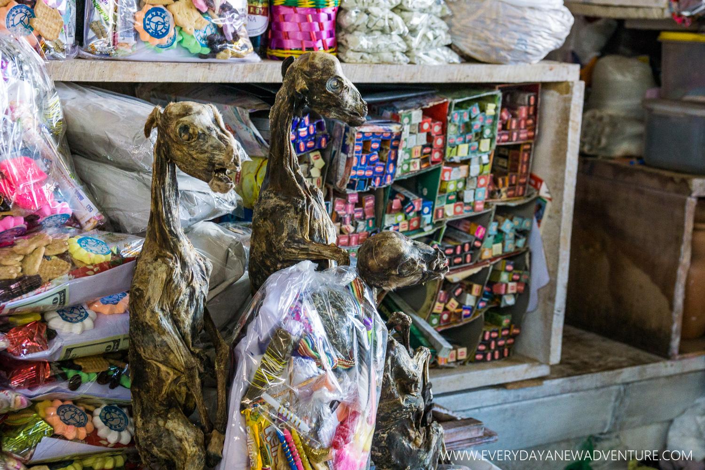 Dried llama fetuses at the market.