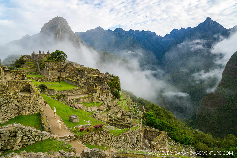 Machu Picchu!