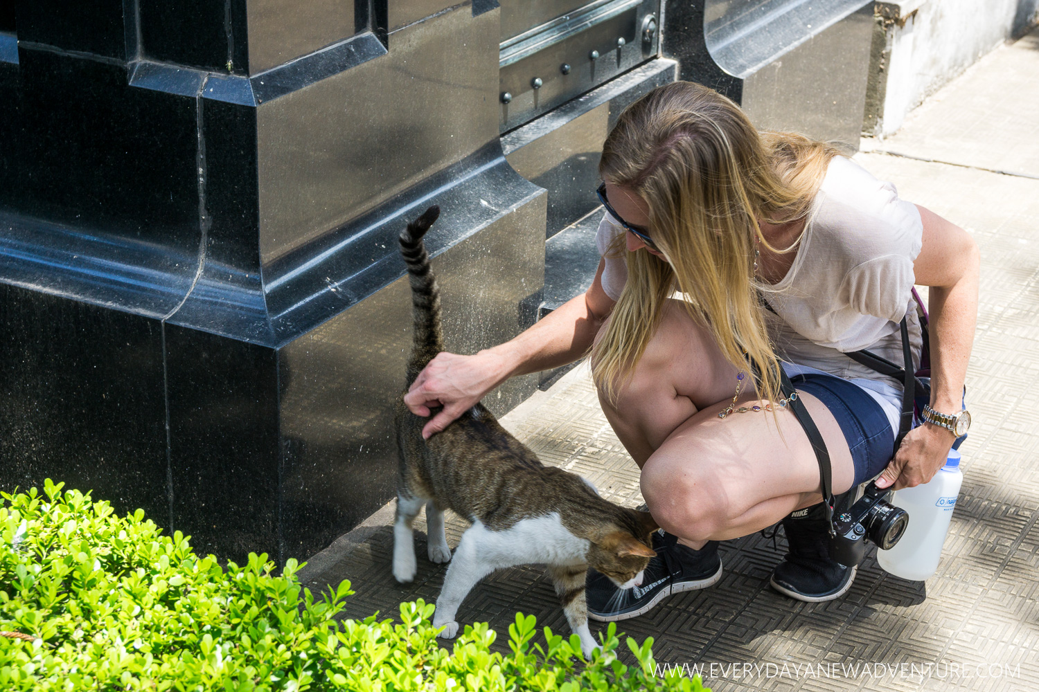 Making friends with one of the many cats at the Recoleta Cemetery.