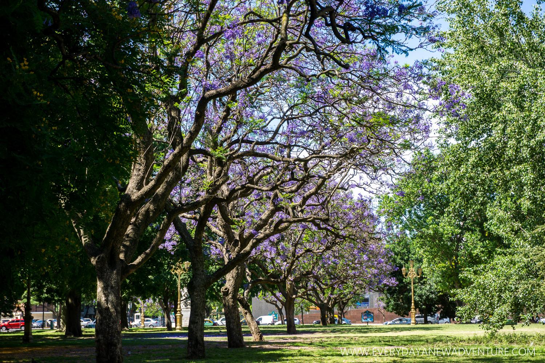 [SqSp Blog-038] Buenos Aires-07218.jpg