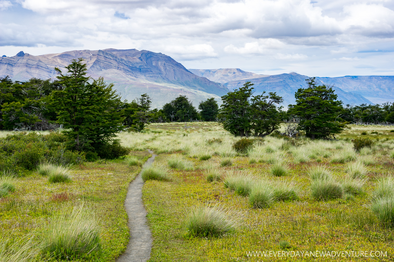 The picturesque trail on Loma del Pliegue Tumbado.