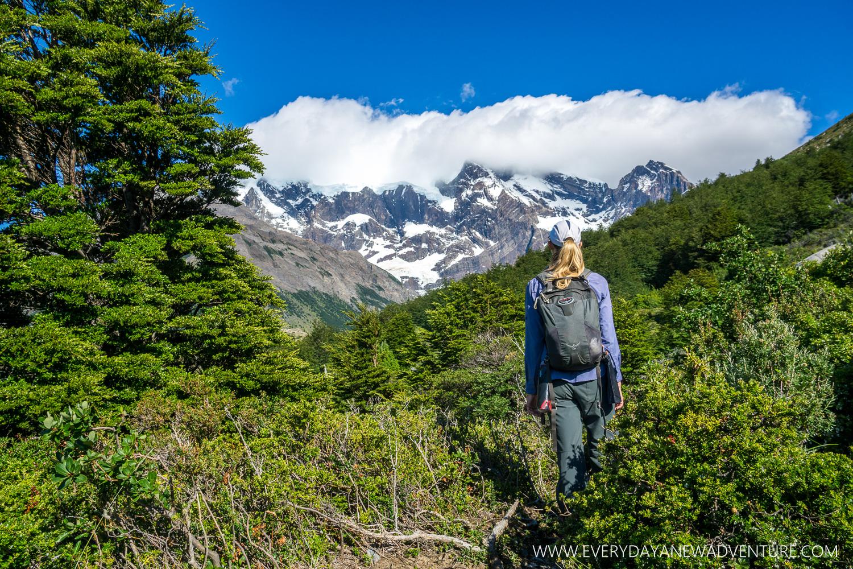 [SqSp Blog-026] Torres del Paine-04432.jpg