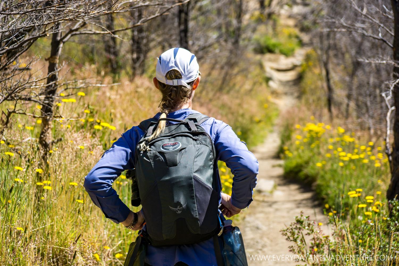 [SqSp Blog-046] Torres del Paine-04948.jpg