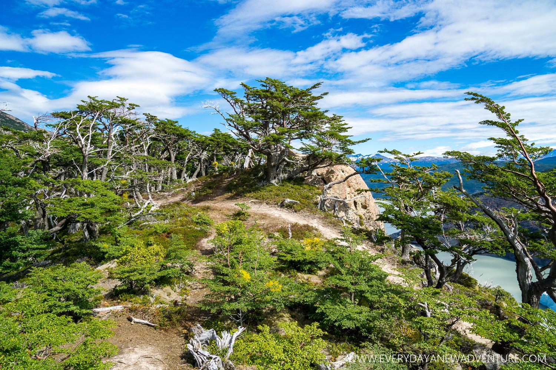 [SqSp Blog-059] Torres del Paine-05389.jpg
