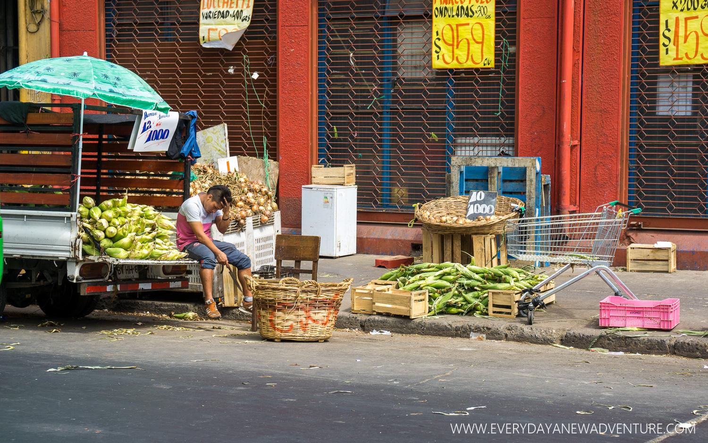 [SqSp Blog-013] Valparaiso-05987.jpg