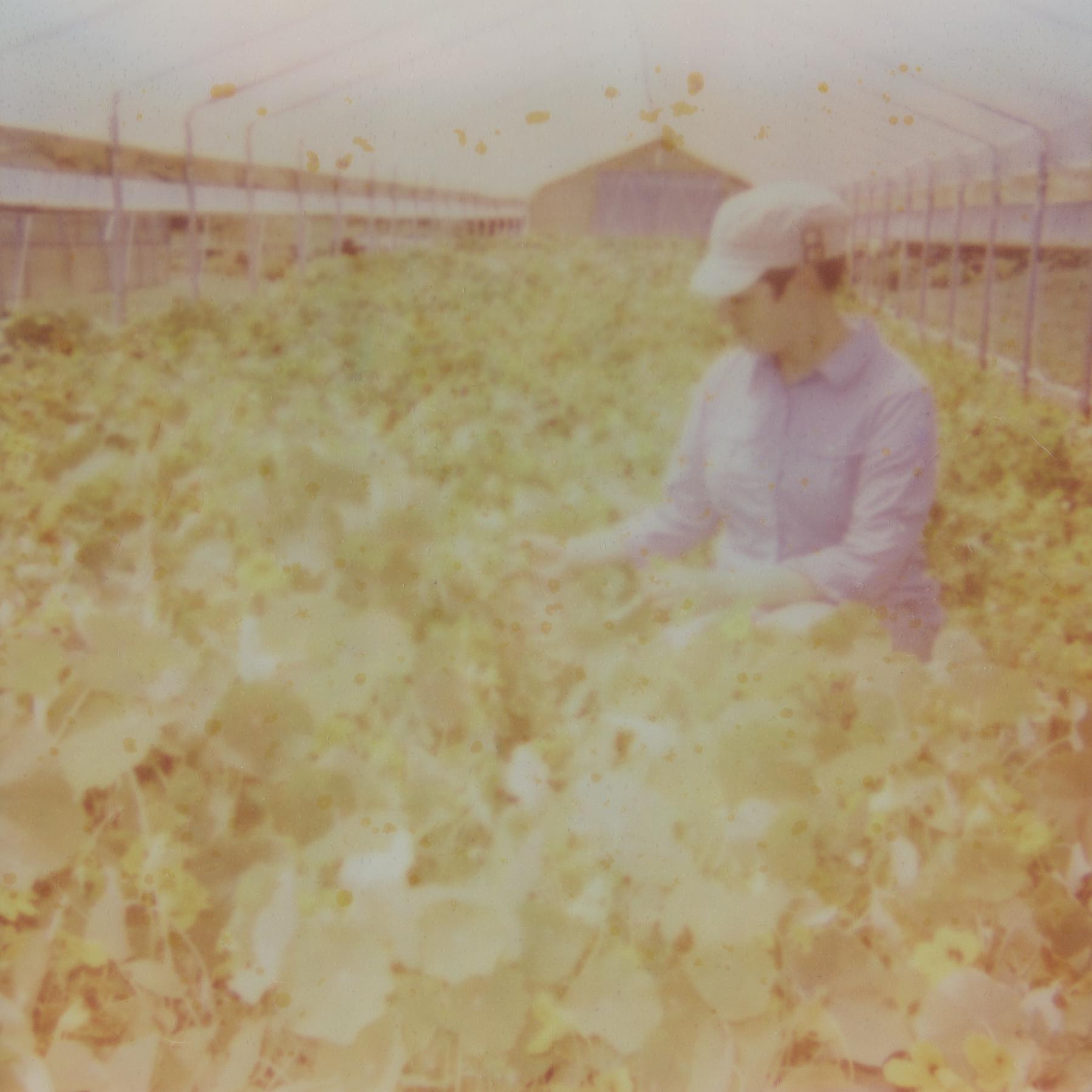 farmer1_600.jpg