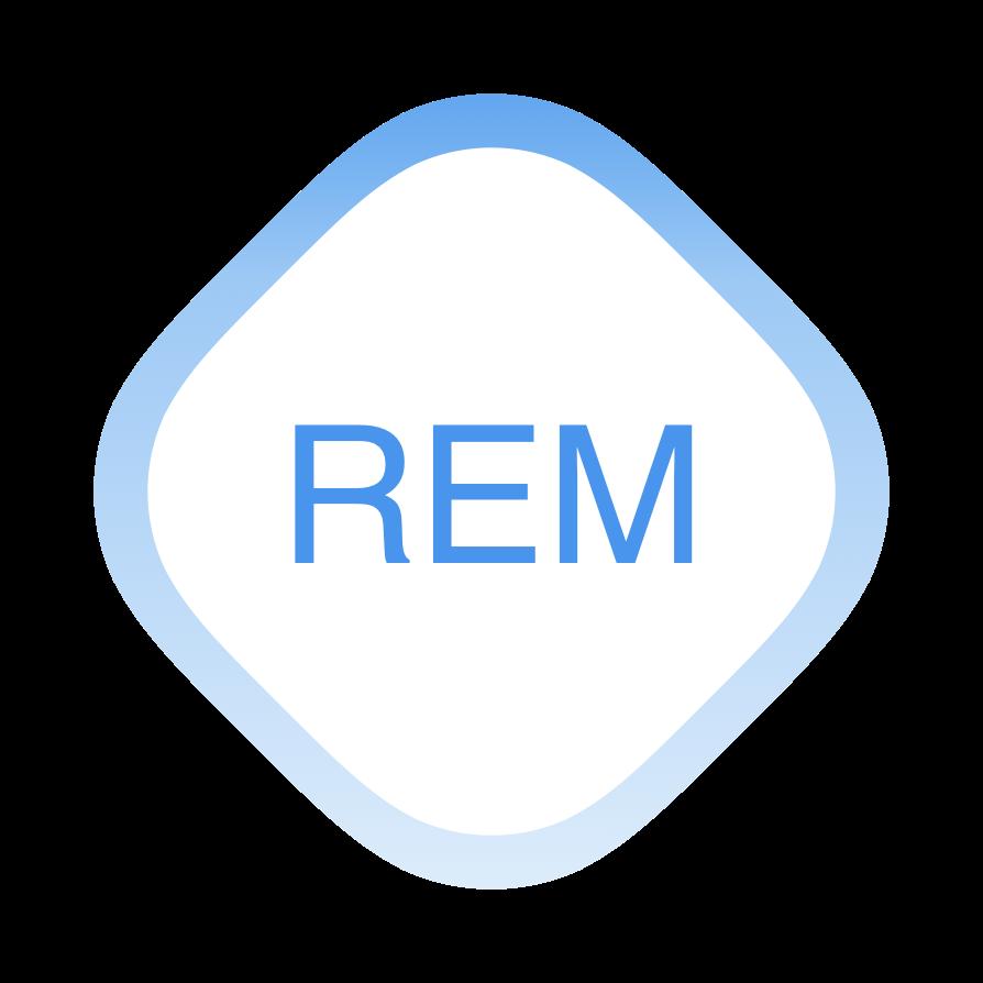 REM Dashboard 2.png