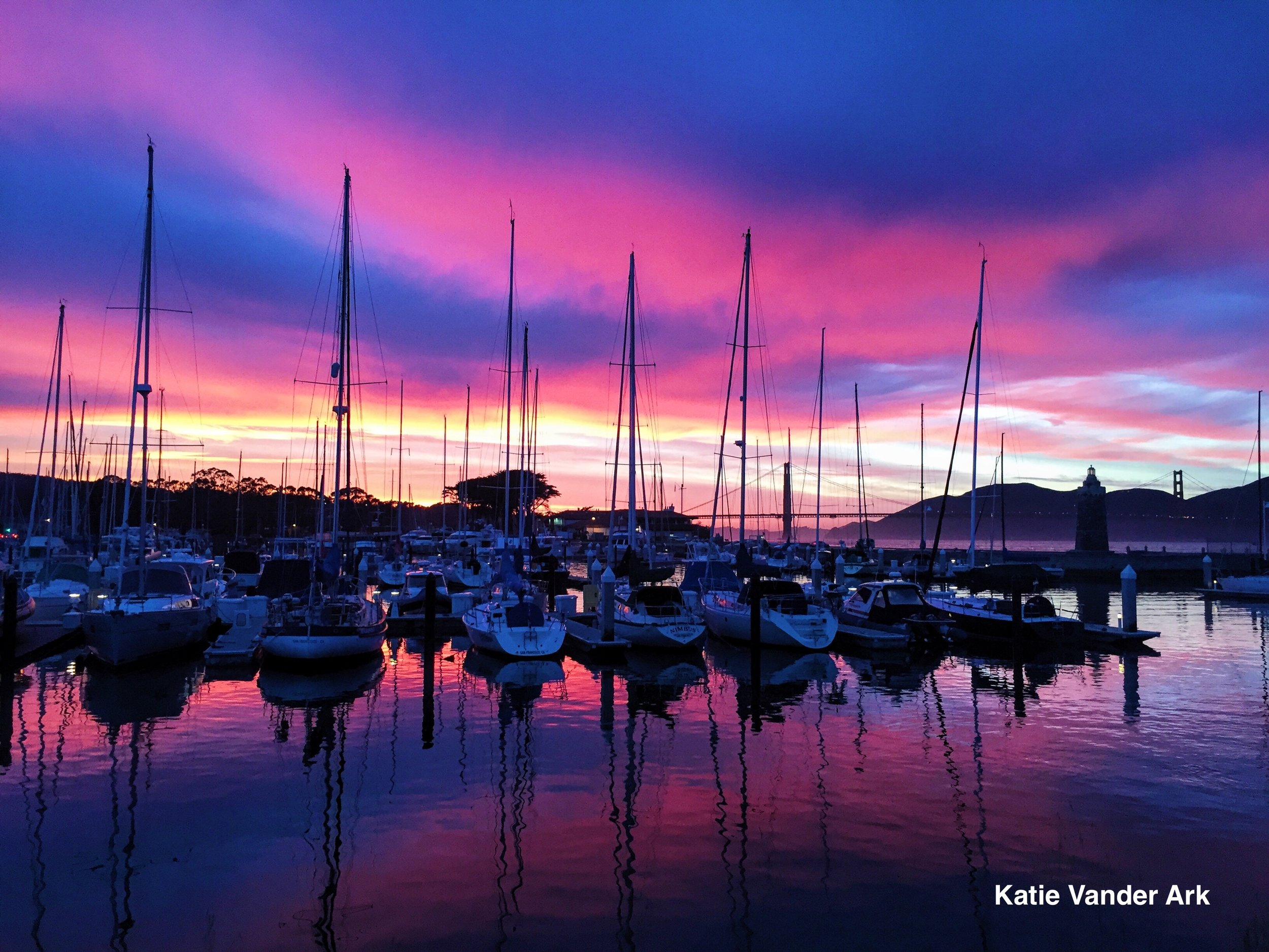 Pink Marina Sunset.jpg