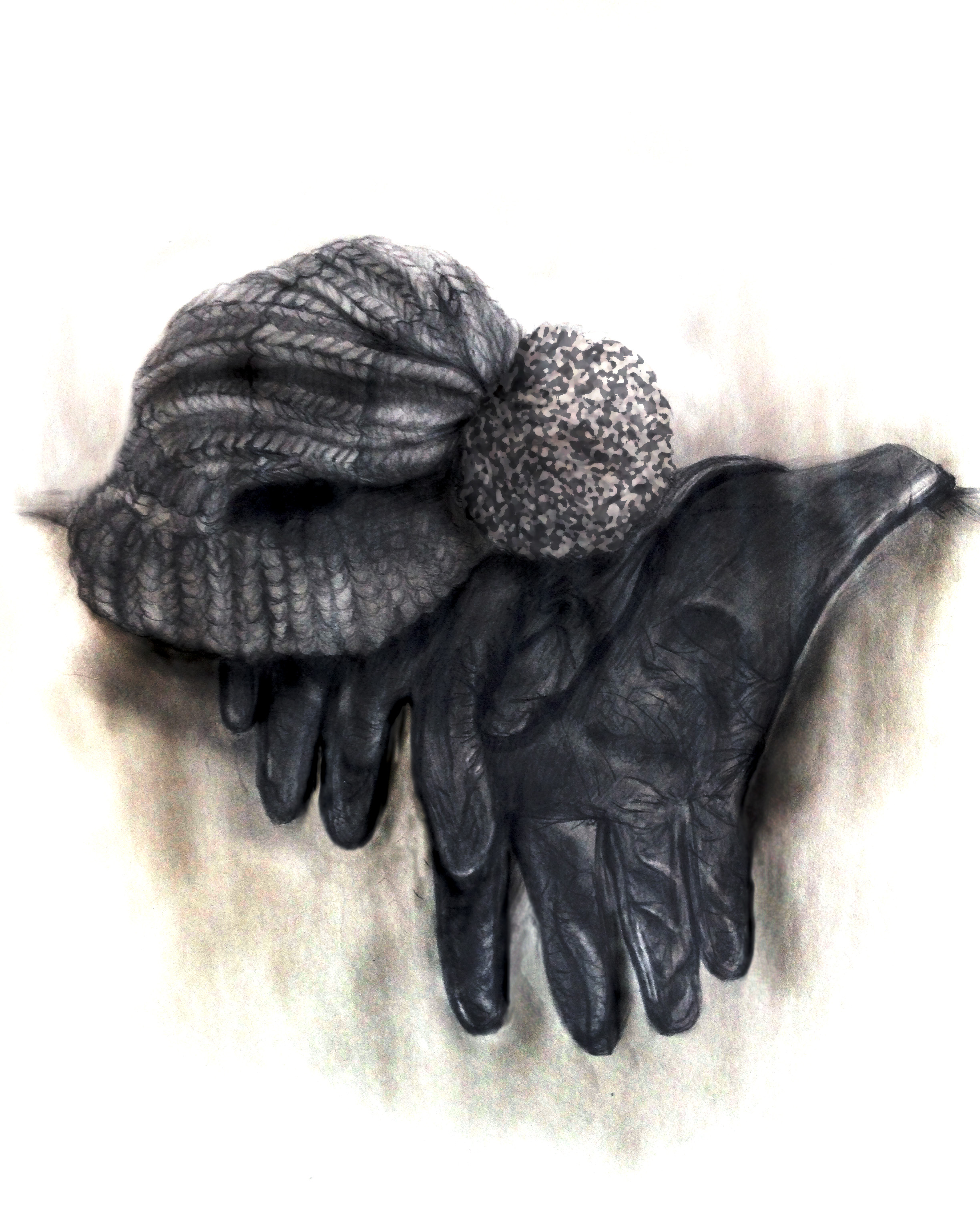 gloves1 copy.jpg