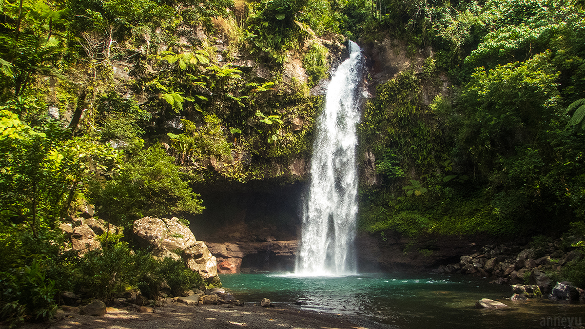 Taveuni Island Photoblog A Vu