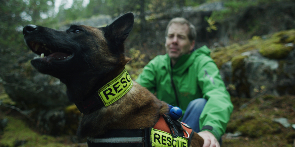BC Search Dogs-4.jpg